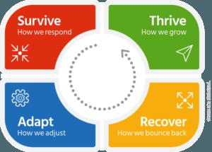 Emotional Intelligence & Resilience Training Workshops