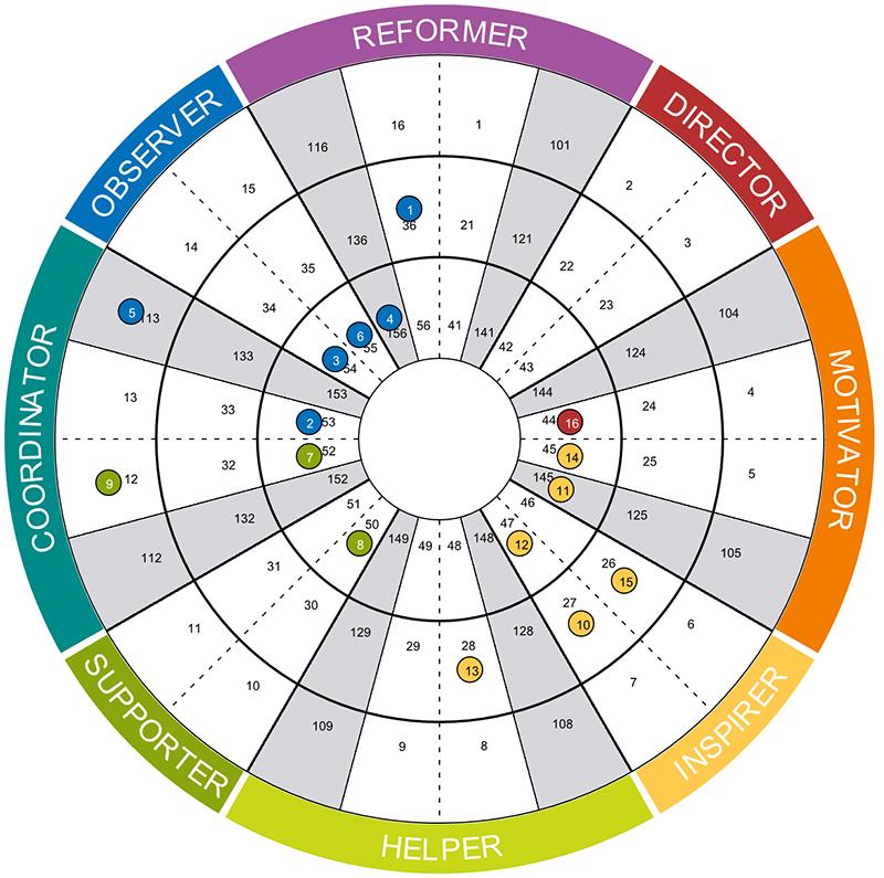 Insights Team Wheel